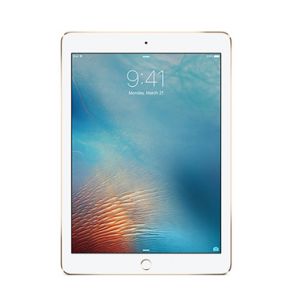 Apple IPADS On Rent in NCR